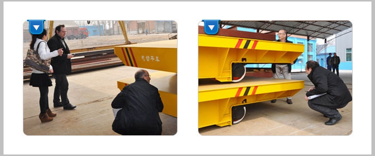 Ellsen Factory Apply Rail Transport Cart